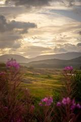 Scotland, the Cairngorms..