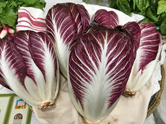 New Mexico farmers market.  USA (cbrozek21) Tags: food cabbage newmexico vegetable