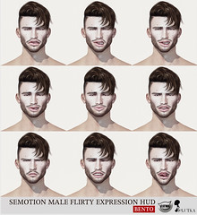 SEmotion Male Bento Flirty Expression HUD (Marie Sims) Tags: fashion facial face feelings flirty fancy mocap modeling model man male men mood mouth mesh tmj semotion sl stands secondlife slfashion set slavatar ao animations animation avatar anim animaitons animaions animated