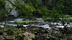 Ruines du Moulin (WoPeR 25 ☘️) Tags: france francia frankreich franchecomté forêt franchecomte doubs montagne montagnes ruines moulin rivière suisse frontière