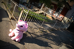 Beware of Dog (cookedphotos) Tags: 2018inpictures toronto ontario canada ca bloordale dog pink stuffed toy animal sidewalk house 365project p3652018 streetphotography