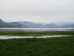 Nature Bay (jamica1) Tags: salmon arm shuswap bc british columbia canada lake mountains marsh wetland
