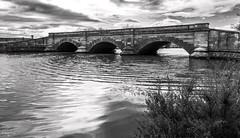 Ross Bridge, Tasmania. (petrock45) Tags: monochrome bridge