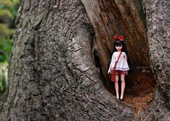 Treeroom (pure_embers) Tags: pure embers doll dolls uk pureembers photography laura england fashion atomaru maru dorandoran doran mary ara cute pretty tree room outside portrait korean