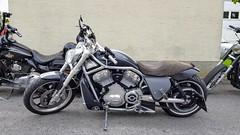Harley Davidson Street Rod VRSCR (John Steam) Tags: motorcycle motorbike motorrad harley davidson salzburg austria vrod street rod vrscr
