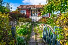A cottage (RdeUppsala) Tags: house cottage casa cabaña jardín garden trädgård koloniträdgård hus stuga uppsala uppland city ciudad stad ricardofeinstein sverige suecia sweden höst autumn otoño