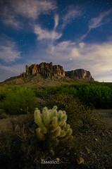 Hidden Treasure (Tassanee28) Tags: nightscapes desert astrophotography arizona lost dutchman superstitionmountains cholla cactus landscapes longexposure clouds stars