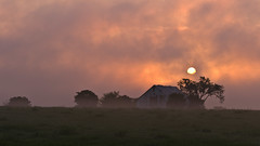 Morning Fog (ramseybuckeye) Tags: barn sun sunrise fog morning clouds tree montgomery county tennessee