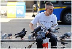 You Think I Am Crazy? - Granville XT5907e (Harris Hui (in search of light)) Tags: harrishui fujixt1 digitalmirrorlesscamera fuji fujifilm vancouver richmond bc canada vancouverdslrshooter mirrorless fujixambassador xt1 fujixcamera fujixseries fujix fujixf56mmf12 fujifixedlens primelens birdman street photography streetphotography candid pigeons thinking philosophical