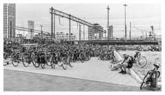 Bike parking... (LukeDaDuke) Tags: eindje eindhoven 040 station trainstation bike bikes bicycle fiets treinstation
