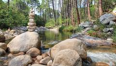 L'équilibre de la nature (Ratatouye) Tags: oso fleuve corse corsica island french nature paysage forêt coursdeau rocher rock
