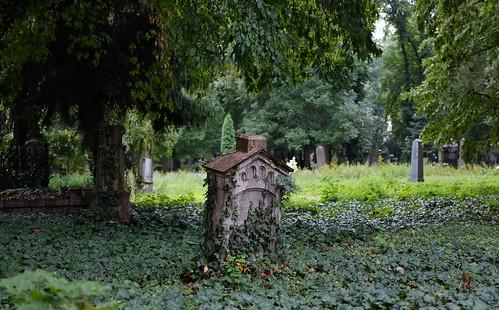 Old Gravestone, Olšany Cemetery