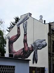 ROA / Cologne - 15 aug 2018 (Ferdinand 'Ferre' Feys) Tags: deutschland germany berlin streetart artdelarue graffitiart graffiti graff urbanart urbanarte arteurbano ferdinandfeys roa