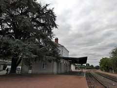GARE DE LOCHES (marsupilami92) Tags: frankreich france centre 37 indreetloire loches gare sncf