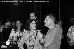 2018 Bosuil-Het publiek bij Devon Allman Project 1-ZW