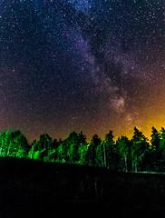 Foret polonaise (jérémydavoine) Tags: aleksandrów lubelskie pologne pl forêt forest sky ciel milkyway voielactée galaxie galaxy night nuit poland polska