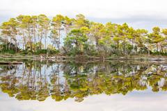 Lac de Divjakë