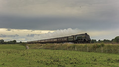 Flying Past (4486Merlin) Tags: 60009 england europe exlner lnerclassa4 northwest railways steam streak transport unionofsouthafrica unitedkingdom beeston cheshire gbr beestoncastle cheshireman rytc wcrc
