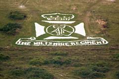 Fovant Regimental Badges (thephantomzone2018) Tags: fovant badges wiltshire regimental