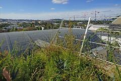 Le toit-jardin de l'atelier-appartement de Le Corbusier (Paris) (dalbera) Tags: dalbera lecorbusier terrasse immeublemolitor paris france