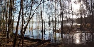 Narrabeen Lake panorama