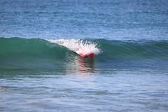 2018.09.15.07.43.29-WhompOffAustralia-042 (www.davidmolloyphotography.com) Tags: bodysurf bodysurfing bodysurfer surf beach whompoff whompoffaustralia australia newsouthwales sydney cronulla