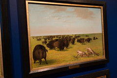 Buffalo hunting in wolfskins (quinet) Tags: 2017 aborigène canada firstnations gemälde georgecatlin indian kunst ontario rom royalontariomuseum toronto ureinwohner aboriginal art museum musée native painting peinture