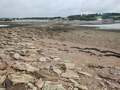 Sully Island c (Dugswell2) Tags: sullyisland p21 tidalisland wales siblet caton