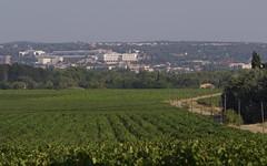 Le CHU de Nîmes, service Oncologie en 1er plan - IMG_6417 (6franc6) Tags: occitanie languedoc gard 30 nîmes août 2018 6franc6 vélo kalkoff vae