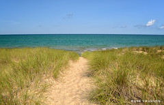 Almost to the Beach (mswan777) Tags: d5100 green wave water 1855mm nikkor nikon bridgman michigan lake scenic outdoor nature cloud sky blue sand beach grass landscape coast shore seascape