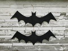 Batty (obsequies) Tags: halloween decor decorations reclaimed wood handmade spooky cute pumpkin pumpkins bats bat recycled shabby chic diy goth aesthetic dark jackolantern fall autumn harvest home homedecor