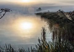 Выткался над озером... (Sergey Klyucharev) Tags: утро рассвет туман