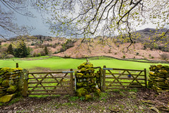 Gateways with a view. (steve.gombocz) Tags: nikon nikonusers nikond810 nikoneurope nikoncamera nikonfx nikon140240mmf28 sceneryshooting simplylandscapes landscapes cumbria westcumbria colour colours color colourmania natureisbeautiful lakedistrict lakedistrictuk out outandabout outdoors landscapephotos landscapephotography landscapephotographs scenery landscapescenes mountains hill crags fells stonewall gate fence nature naturesviews landscapepicture nicepictures flickrlandscapes explorelandscapes flickrscenery