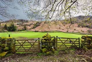 Gateways with a view.