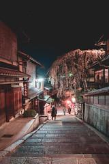 Sannenzaka Sakura - Kyoto, Japan (inefekt69) Tags: japan kyoto 日本 京都 京 asia nikon d5500 night sannenzaka ninenzaka traditional edo sakura hanami flowers cherry blossoms spring nature さくら 桜 花見