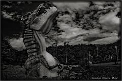 T-Rex (SHADOWY HEAVEN) Tags: 160622p1s0042 北海道 日本 ファインダー越しの私の世界 写真好きな人と繋がりたい 写真撮ってる人と繋がりたい 写真の奏でる私の世界 coregraphy japan hokkaido tokyocameraclub igers igersjp phosjapan picsjp 空 雲 モノクロ モノクローム モノクロ写真 白黒写真 bnwlife bnwdemand igersbnw noirshots monochrome mono monotone blackandwhite bw bnw blackwhite noiretblanc japaninbw blackwhitephotos cloud clouds sky trex 恐竜 dinosaur
