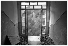 Inside the abandoned ammo factory N.1 (GigiBona) Tags: analogphotography abandoned abbandono analog abandonedplaces bw bwphotography blackandwhitefilm bwfilm classicblackwhite doityourselfbw decay 35mmfilm filmphotography film italy italia ilfordhp5 rodinal tuscany toscana pointnshoot