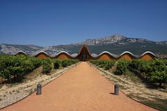 Bodegas Ysios, Laguardia (Tom Willett) Tags: rioja spain bodgea bodegas laguardia ysios wine winery vineyard vine wineries bodegasysios arquitectosantiagocalatrava
