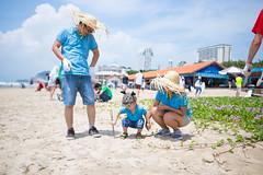 IMG_2667 (Ho Chi Minh City & Hanoi) Tags: scd rse csr beach vietnam teambuilding coworkers ecology plastics seminar workshop ccifv cci ccifi france