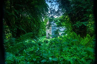 Minster Church lies deep in the woods and is overgrowing but still used occasional for services