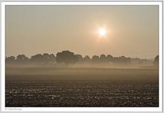 IMGP6708-Rahmen-kl (fredericfromage) Tags: morgen sonnenaufgang nebel bodennebel landschaft himmel felder bäume