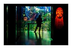 musée du quai Branly (15) (Marie Hacene) Tags: musée quaibranly paris statue silhouette