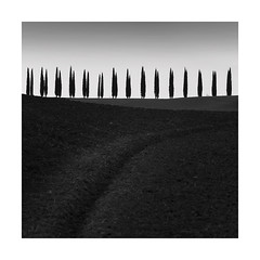 Ploughed (Nick green2012) Tags: square landscape blackandwhite silence tuscany illume minimal