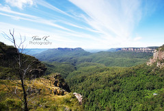 Skyway View of The Blue Mountains (tessa.kyren) Tags: blue mountains trees landscape clouds australia nsw australian green greenery nature ranges trek fine art photo print