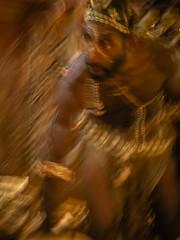 Golden Warrior (Judy Sara11) Tags: bird karawari newguinea