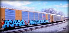 (timetomakethepasta) Tags: achoo nah one nahone reznor freight train graffiti art bnsf autorack 2f dtb