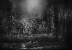Abandoned Island House (andredekok) Tags: darkness creepy abandoned house spooky bw monochrome moonlight nighttime textures