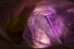 Backlit amethyst crystal (ChusPS) Tags: macromondays rock stone mineral crystal color light macro details tamron90mm nikon d7100 nature photo photography photographer amethyst backlit quartz