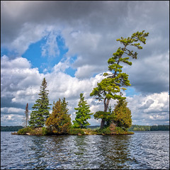 Pine Islet (Rodrick Dale) Tags: pine islet trees algonquin park provincial ontario canada