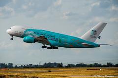 "[CDG] HiFly Malta ""Save the Coral Reefs Livery"" Airbus A380-841 _ 9H-MIP (thibou1) Tags: savethecoralreefslivery thierrybourgain cdg lfpg spotting aircraft airplane nikon d810 tamron sigma hiflymalta airbus airbusa380 a380 a380800 a380841 airaustral run 9hmip mirpurifoundation hifly akzonobel takeoff"